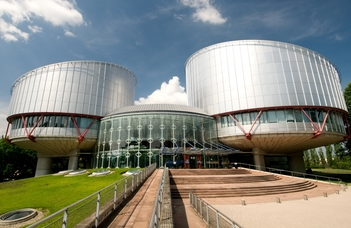 Workshop on the relation of the ECtHR and national constitutional courts.